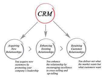 CRM and Sales Team